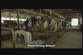 Porno animal avec elephant
