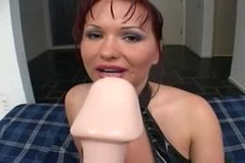 Xxxn porno avec animal